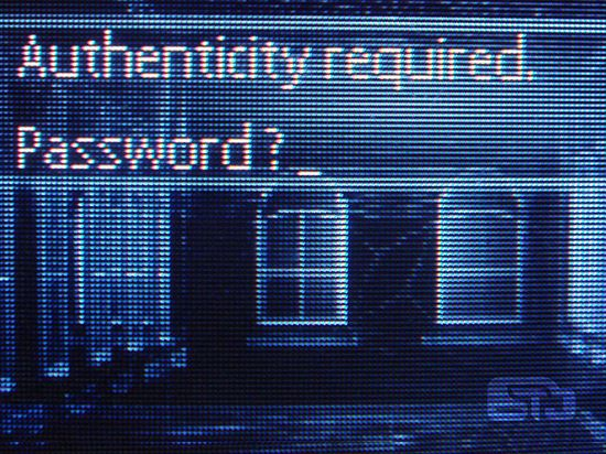 Authenticity required: password?