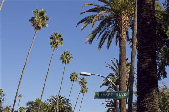 Sunset Boulevard - LA
