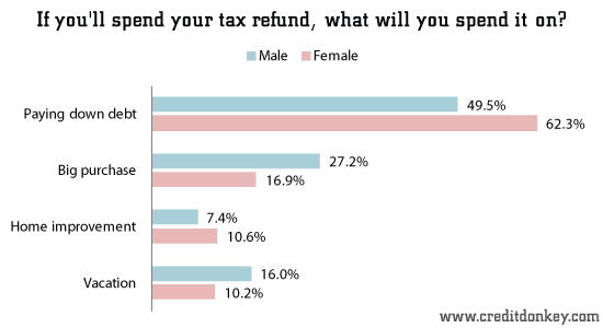 If you'll spend your tax refund, what will you spend it on?