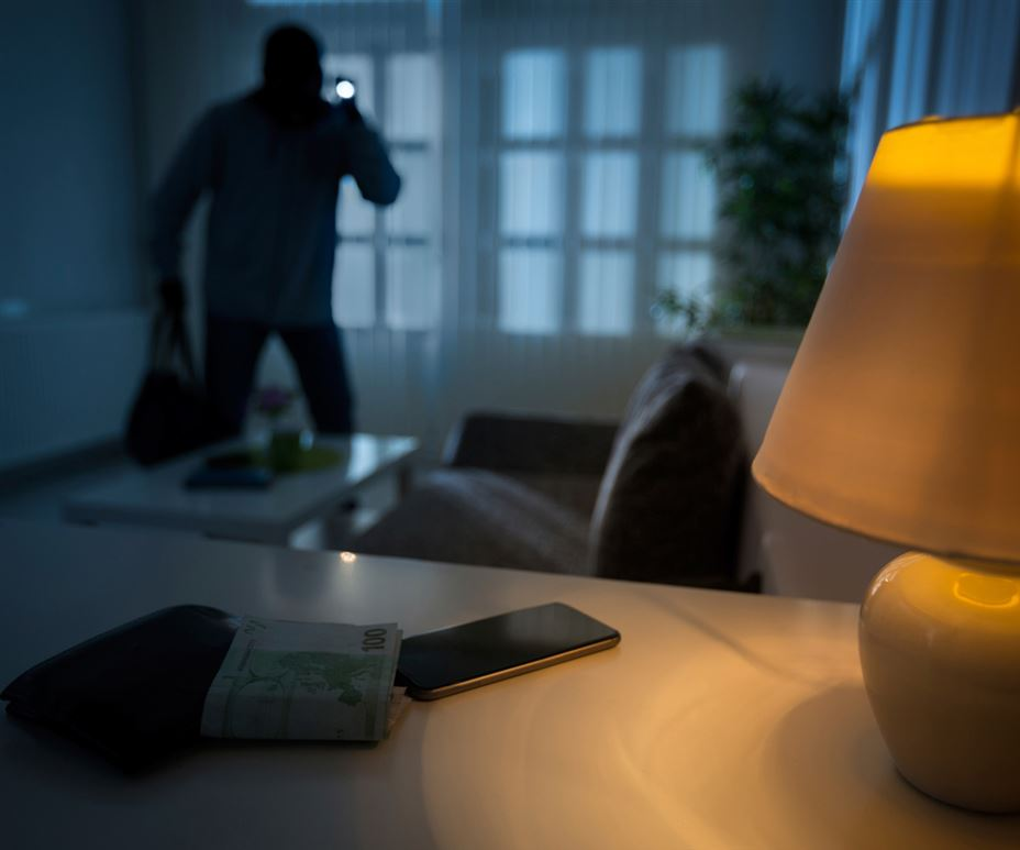 23 Alarming Burglary Statistics: Is Your House Safe?